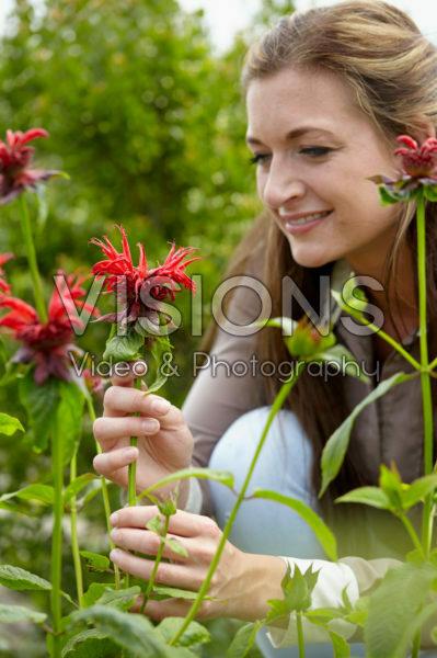 Lady with Monarda flowers