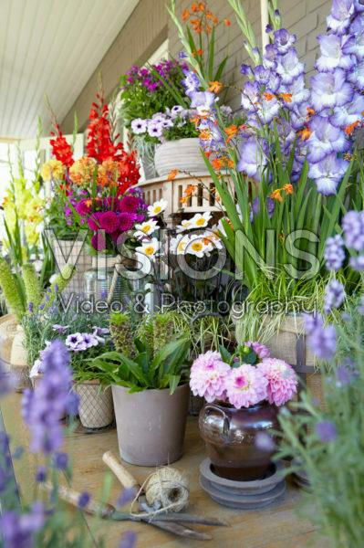 Veranda met zomerbloemen