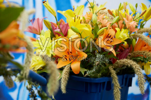 Mixed lilies on Dutch bicycle
