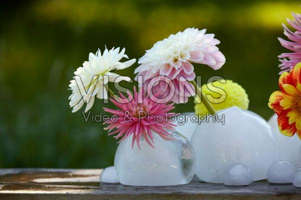 Ice vases with dahlias