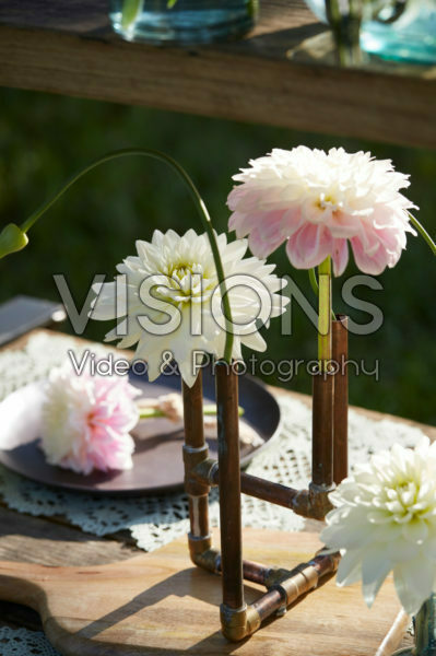 Dahlias in candle holder