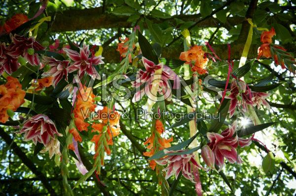Summer flowers hanging in tree
