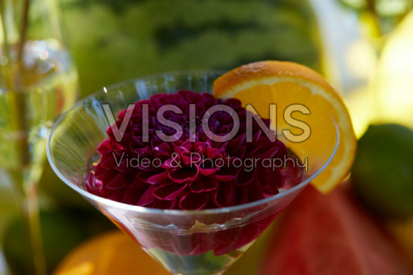 Dahlia in cocktail glass