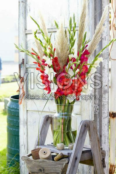 Gladiolus boeket