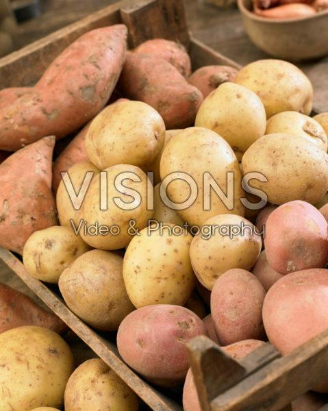 Aardappel assortiment