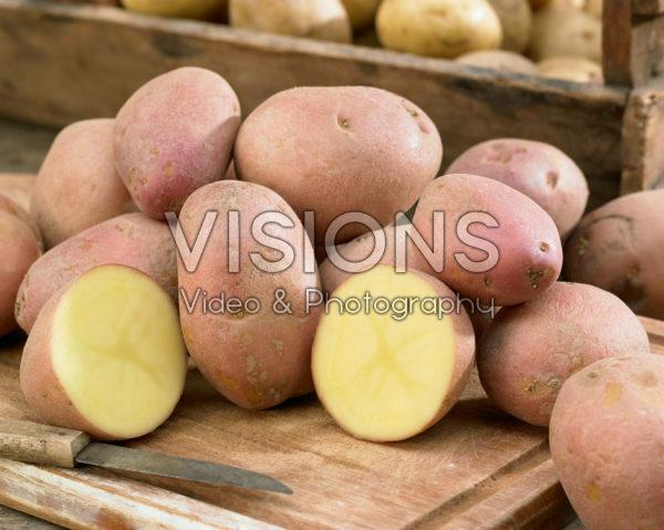 Solanum tuberosum Mozart