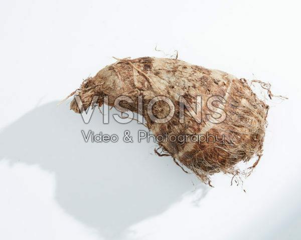 Colocasia antiquorum, Eddoe