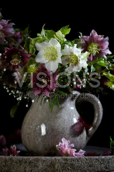 Helleborus bouquet