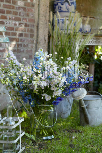 Vase of Delphiniums