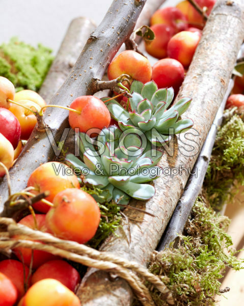 Arrangement with crab apples