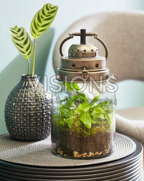Decorative lantern with ferns