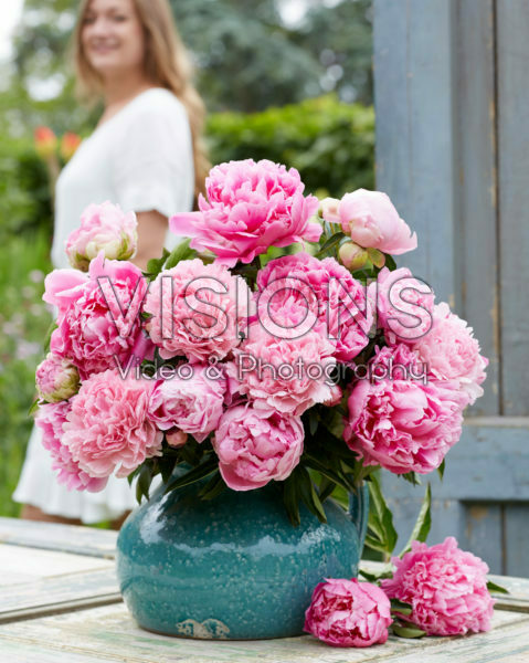 Paeonia fluffy pink bouquet