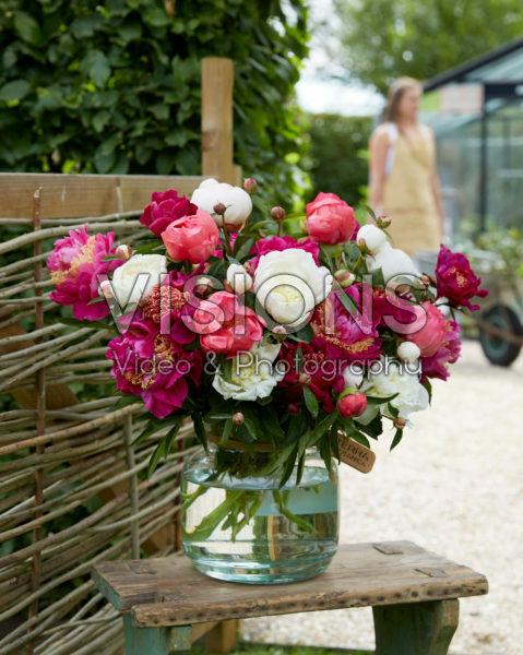 Paeonia roze en wit boeket