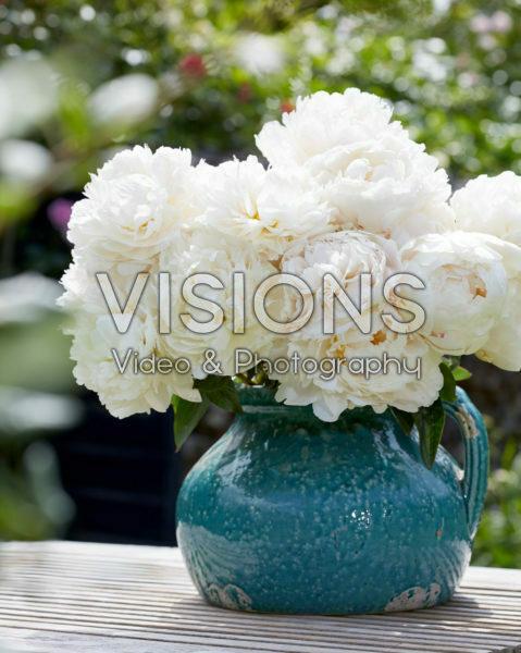 Paeonia Bowl of Cream bouquet