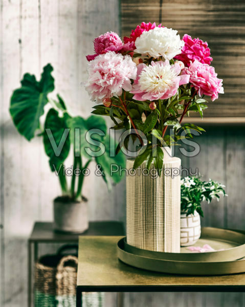 Paeonia bouquet
