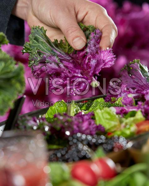 Brassica, edible ornamental cabbage