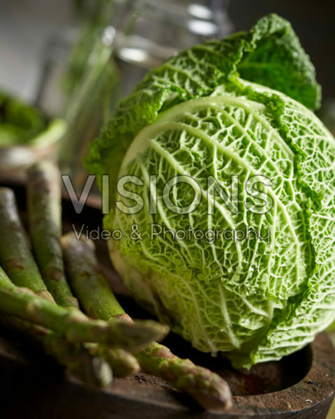 Brassica oleracea convar. capitata, savoy cabbage