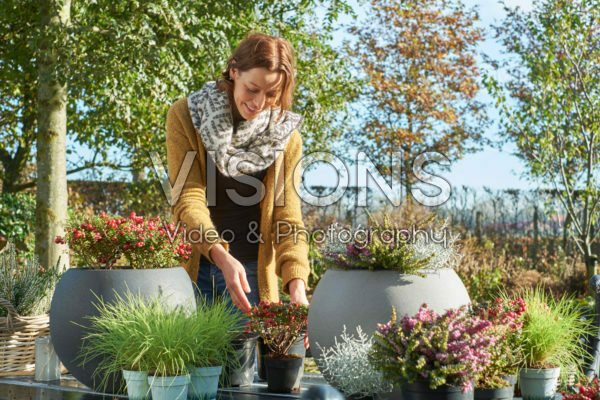 Making mixed autumn containers