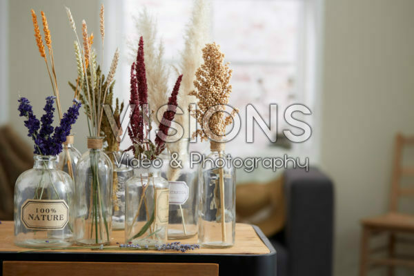 Dried flowers collection