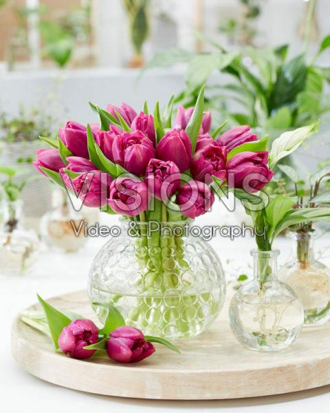 Tulipa Double Prince boeket