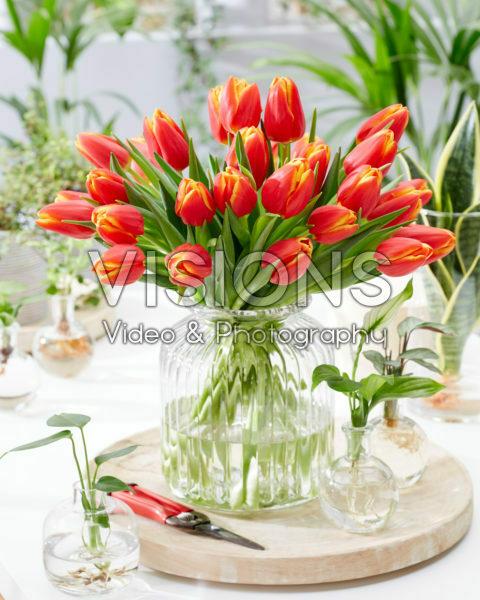 Tulipa Choice boeket