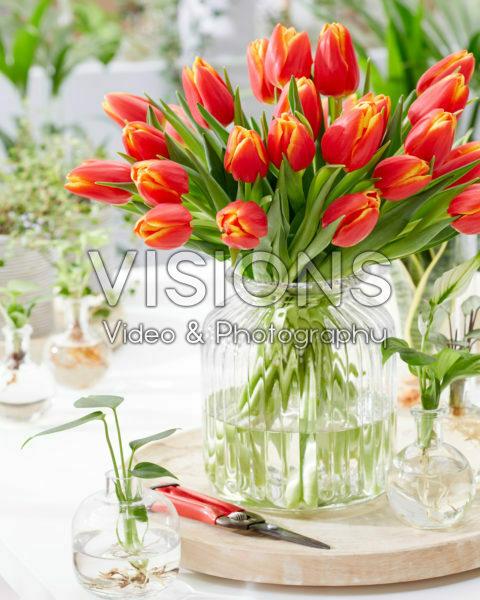 Tulipa Choice bouquet