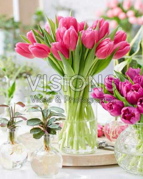Tulipa Ivanka boeket