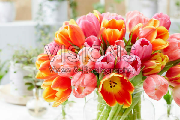 Colourful tulip mix in vase