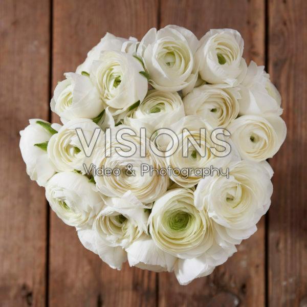 Ranunculus Giga White