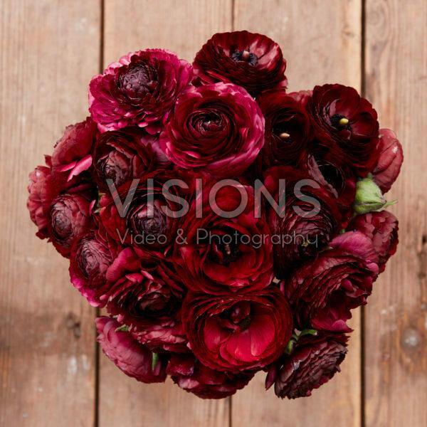 Ranunculus Black Jack