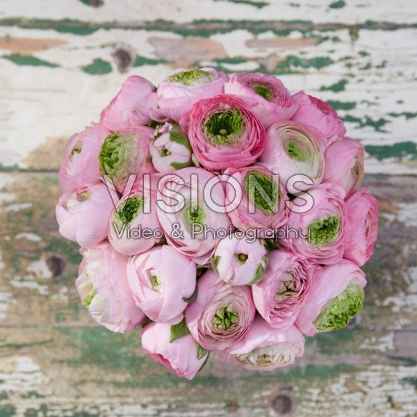 Ranunculus Roze