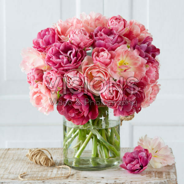 Tulipa dubbel roze mix