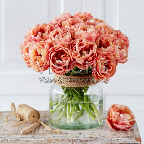 Tulipa Copper Image