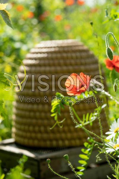 Beehive in flower field