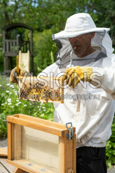 Beekeeper with observation hive