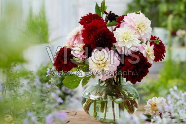 Dahlia bouquet; Arabian Night, Orion