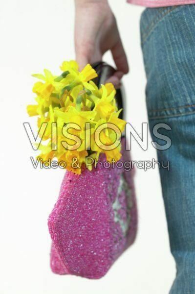 Daffodils in pink handbag