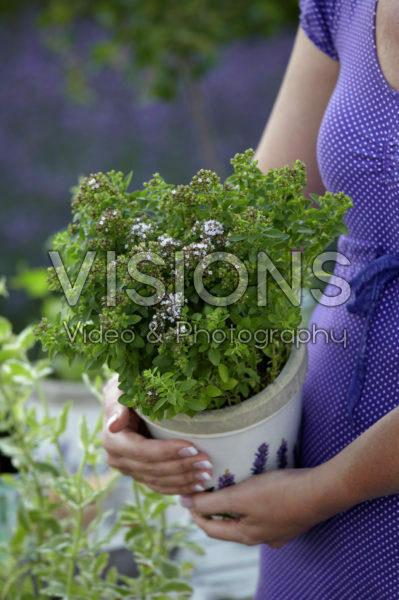Woman holding thymus
